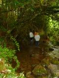 山奥の小川で自由研究2009夏